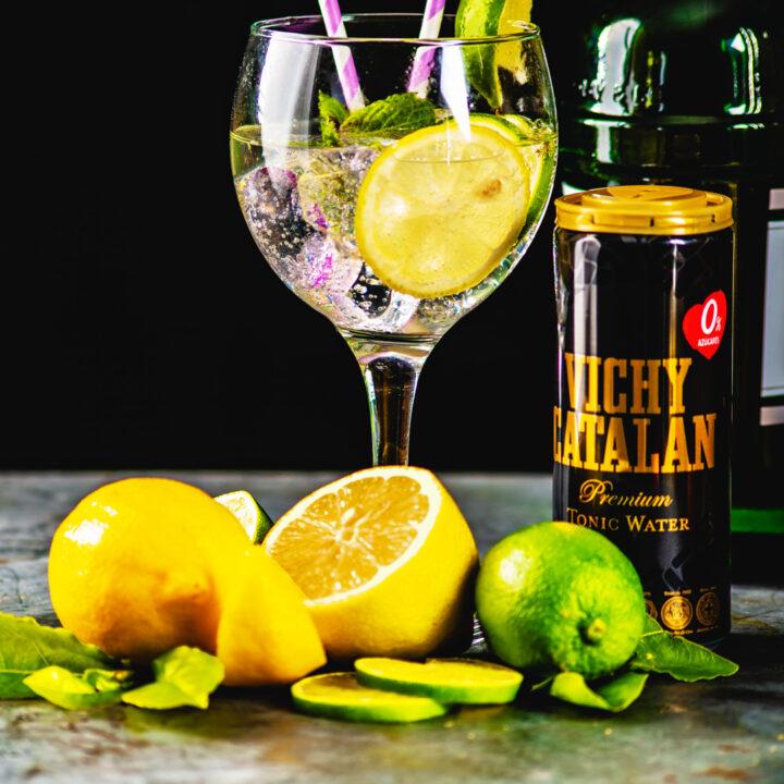 Vichy Catalan Premium Tonic Water